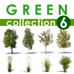 Green Collection 6