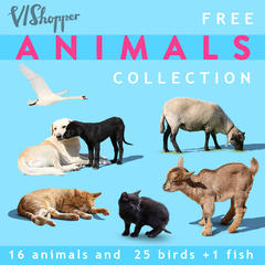 Animal Collection 1