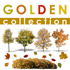 Golden Collection 1