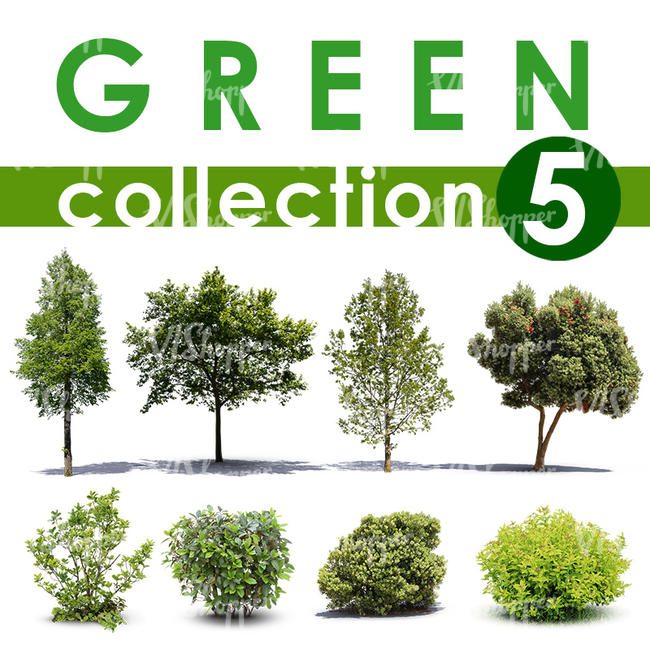 Green Collection 5