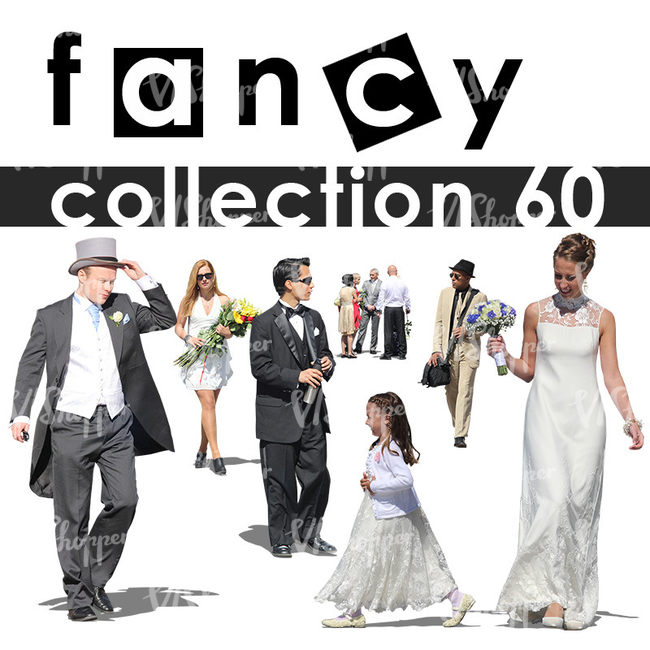 Fancy Collection 1