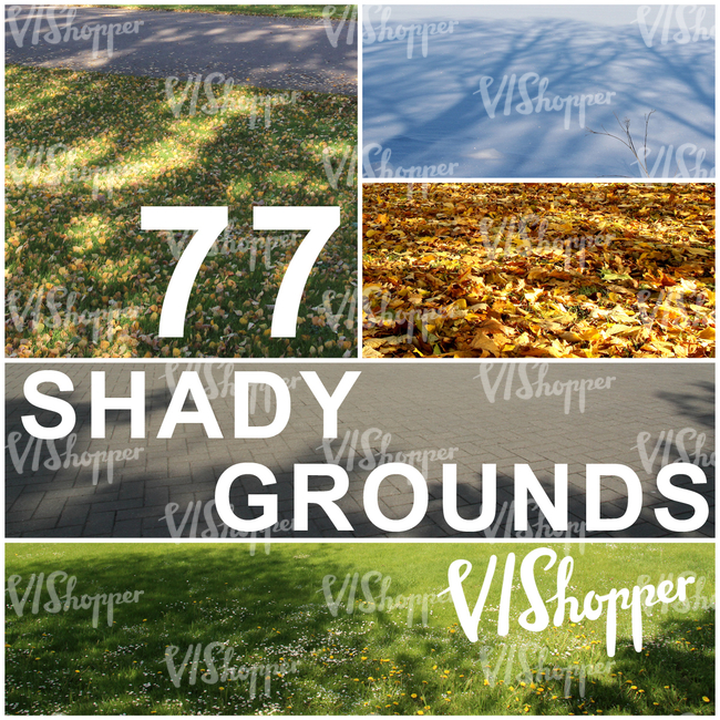 77 Shady Grounds