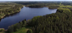 bird-eye view of a lake and forest