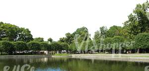 park with decorative trees and a pond