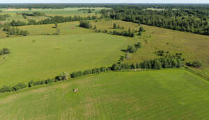 aerial voew of large fields in summer