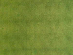 aerial view of mowed lawn