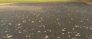 paved square covered with fallen leaves
