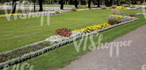 park ground with flowerbeds