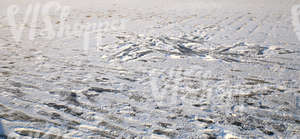 snow-covered ground with messy footprints