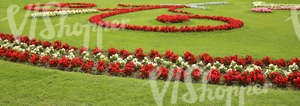 park ground with red and white flowerbeds