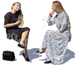 two women sittin in a cafe and drinking wine