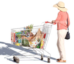 woman standing with a shopping cart