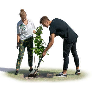 man and woman planting a tree