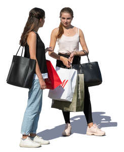 two young women with shopping bags standing
