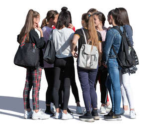 group of teenage girls standing and talking