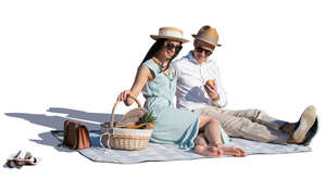 fancy couple having a picnic