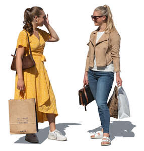 two cut out young women shopping and talking