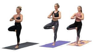 cut out group of women practicing yoga