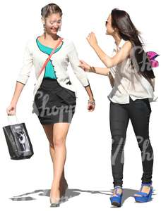 two women with shopping bags walking and talking