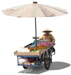 cut out asian street vendor with a cart