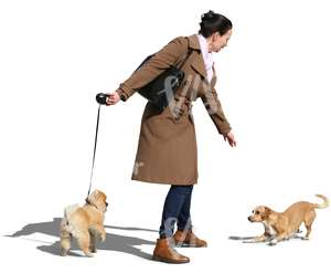 woman walking a dog meeting another dog