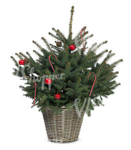 cut out decorated small christmas tree in a basket
