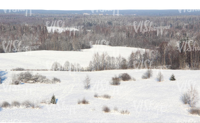 cut out backround with a winter landscape seen from above