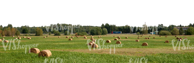 background with a harvested hayfield