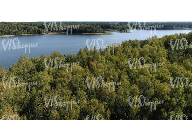 bird-eye view of a forest and lake