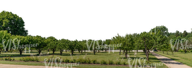 cut out background with a park and orchard