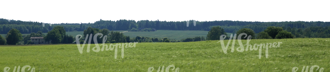 cut out background with fields and trees