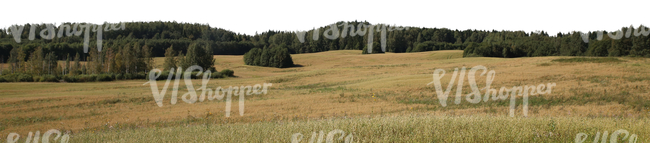 cut out background with a large hay field