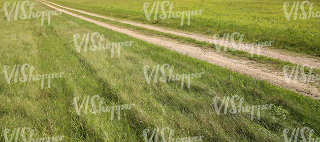 path in a grass field