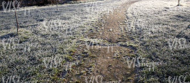 pathway in a frost covered field