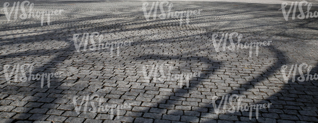 paved square with tree shadows