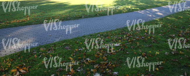 grass ground with a paved walkway and autumn leaves