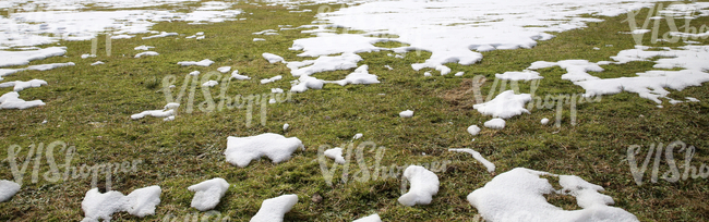 grass ground with patches of snow