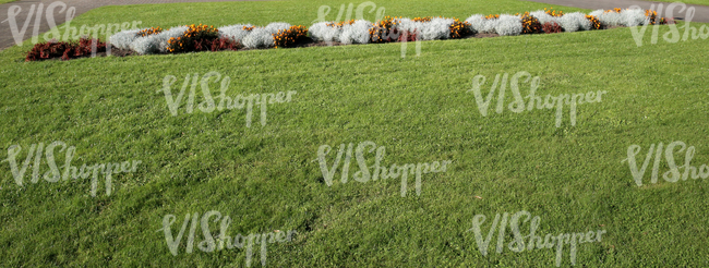grass ground with a flowerbed