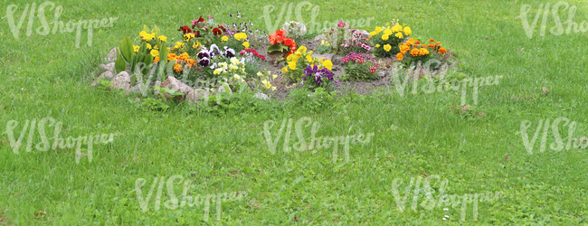 round bed of flowers