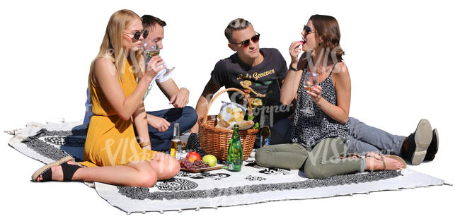 four people having a picnic