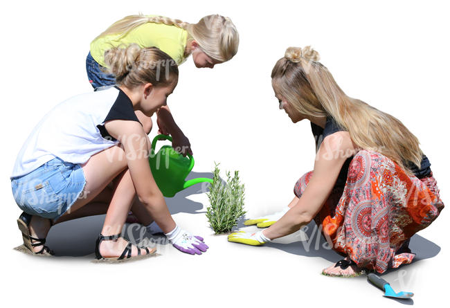 mother with two daughters planting in the garden