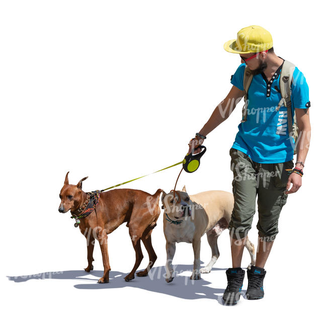 man walking with two dogs