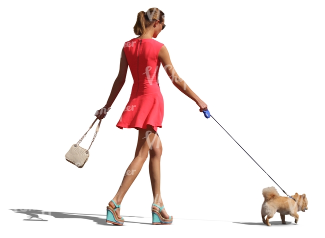fancy woman with a dog