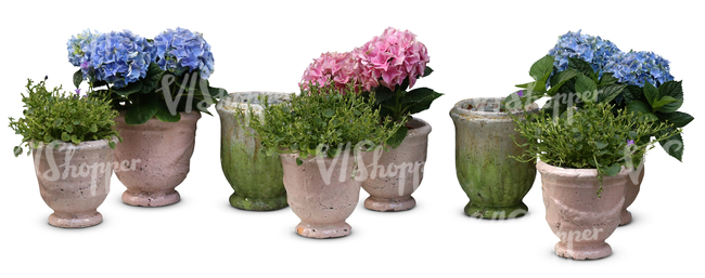 cut out composition of potted plants and flowers