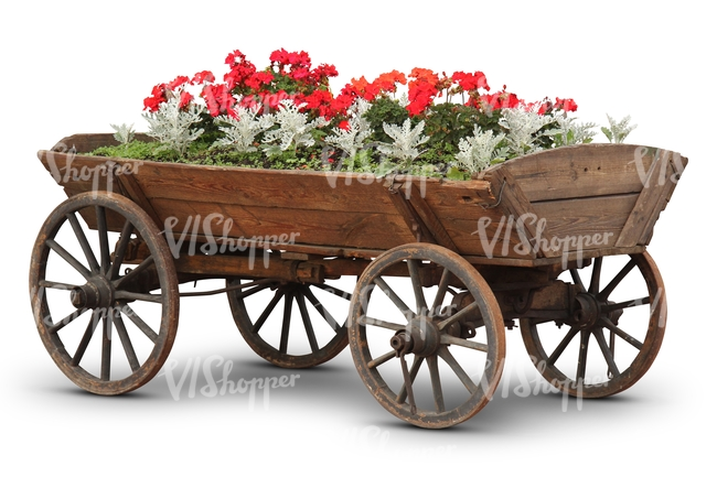 cut out flowerbed in an old carriage