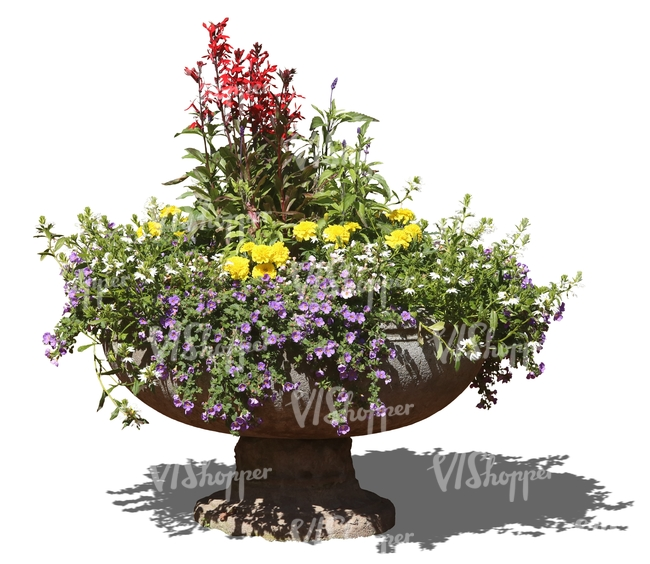 colorfol bouqet of flowers in a stone pot