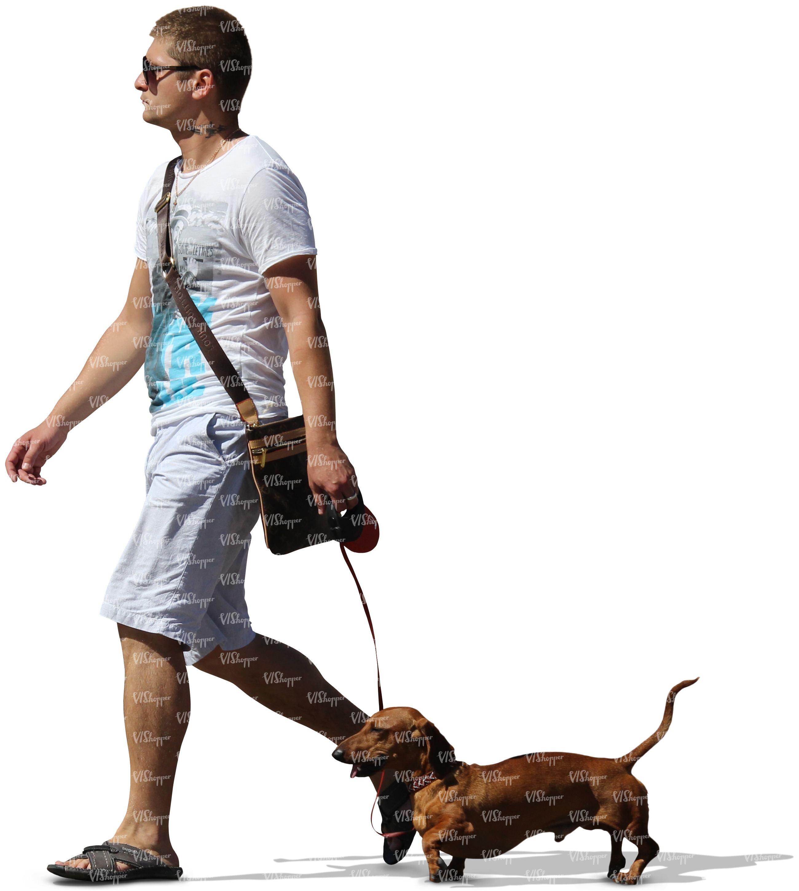 Pictures Of Man Walking A Dog