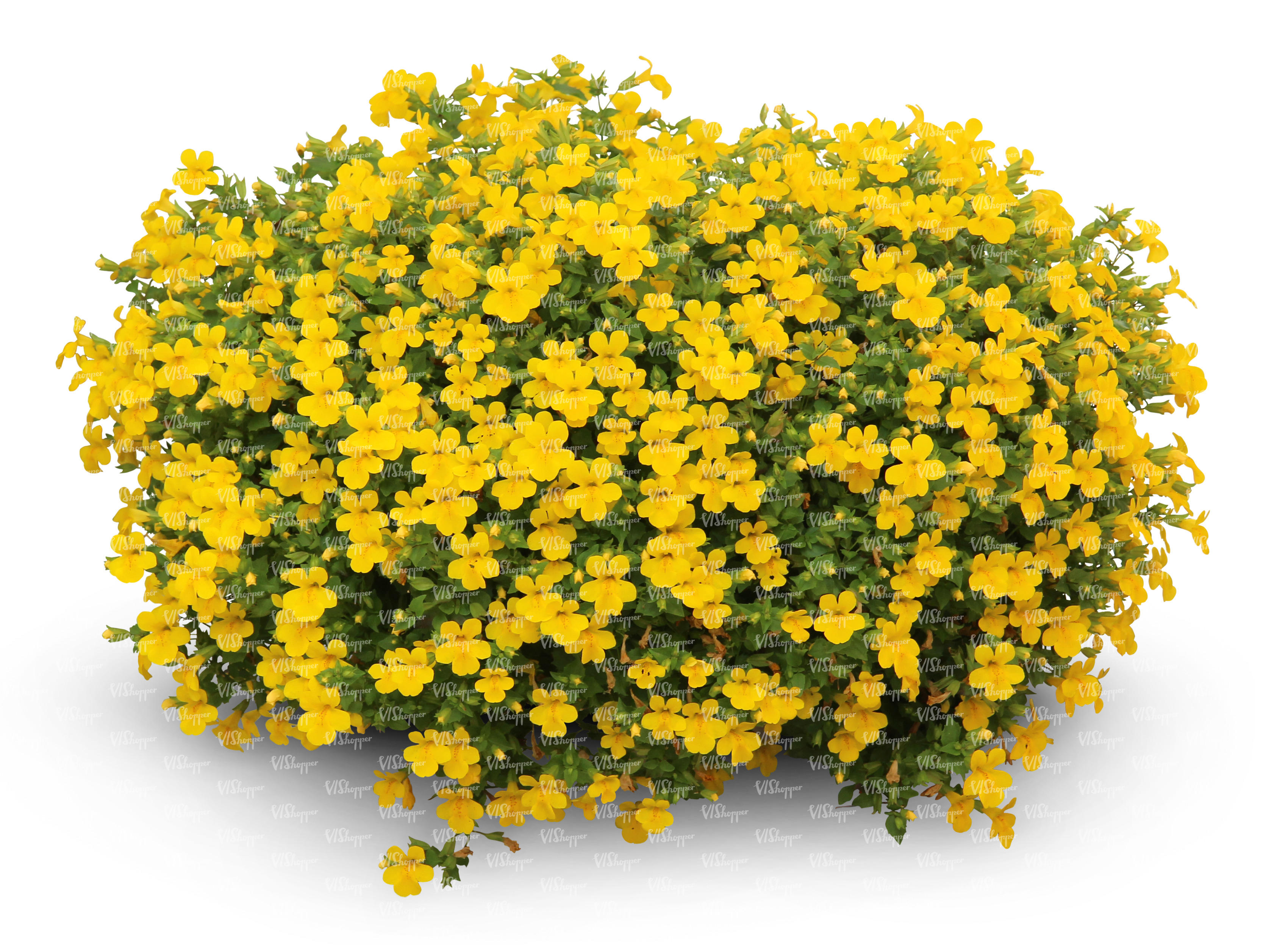 Cut Out Large Flower Bush With Yellow Blossoms Cut Out Trees And