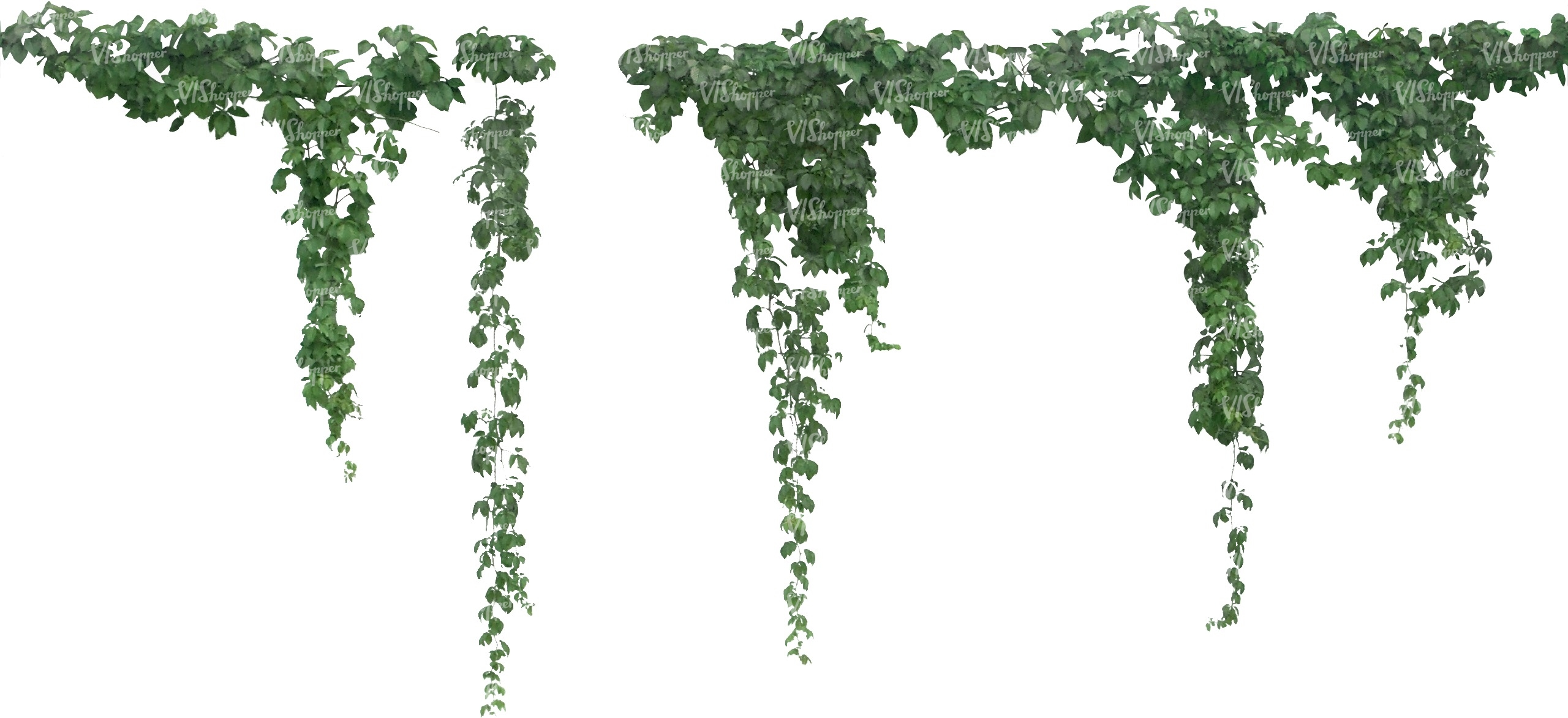 Cut Out Vine Hanging Cut Out Trees And Plants Vishopper